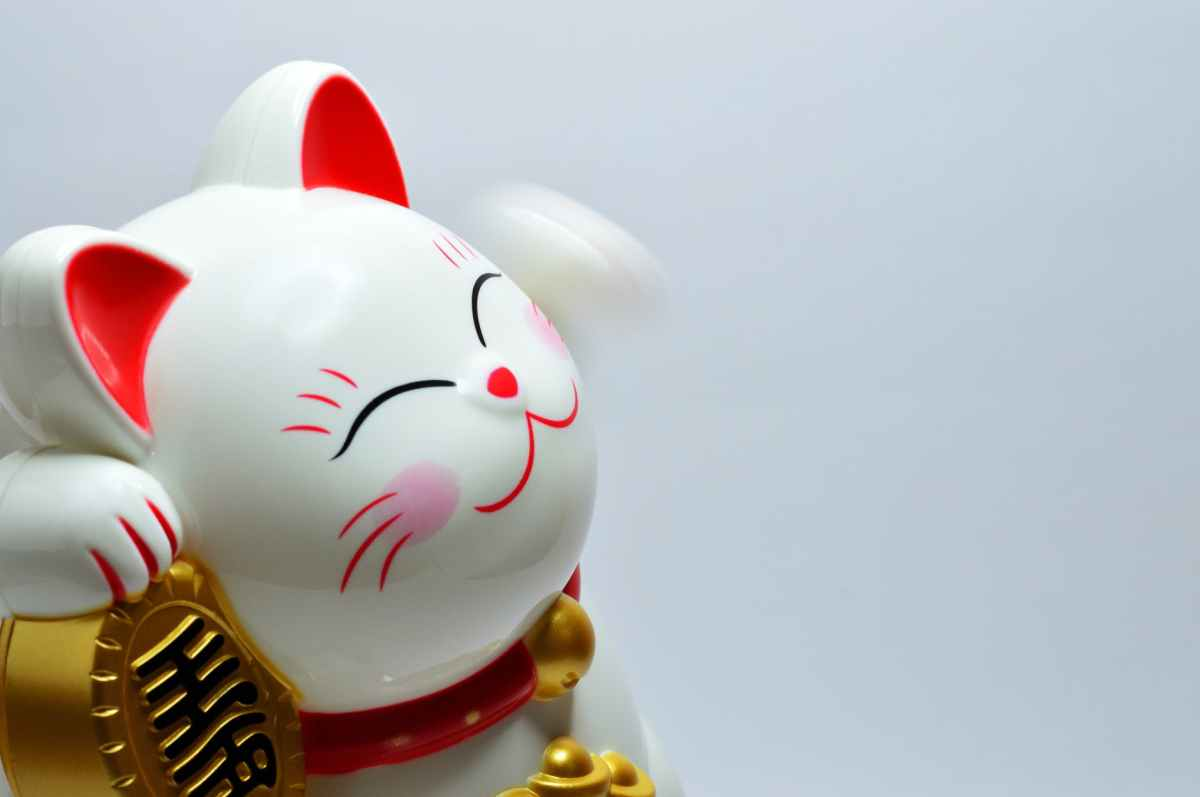 Raising Capital Might take More Than a Lucky Cat