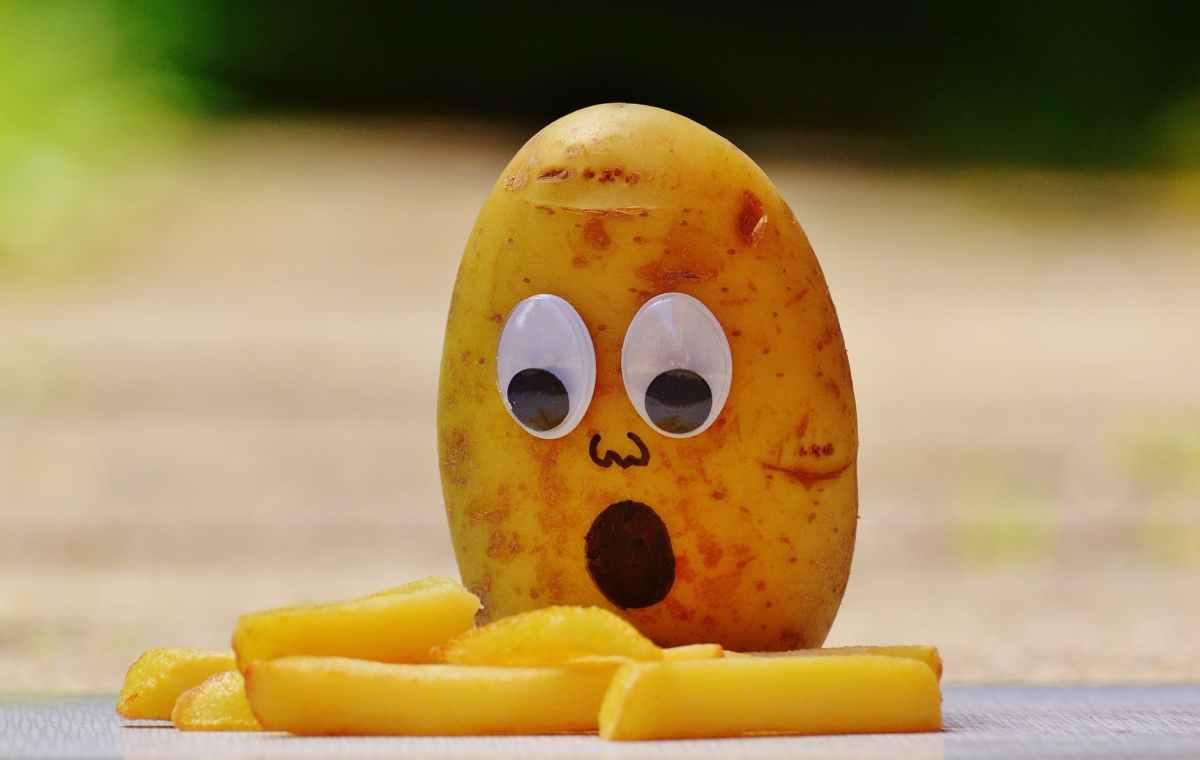 Crowdfunding: Potato Salad andBeyond