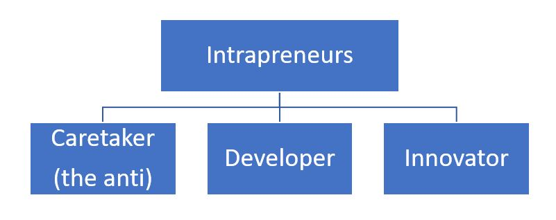 Intrapreneur Spectrum